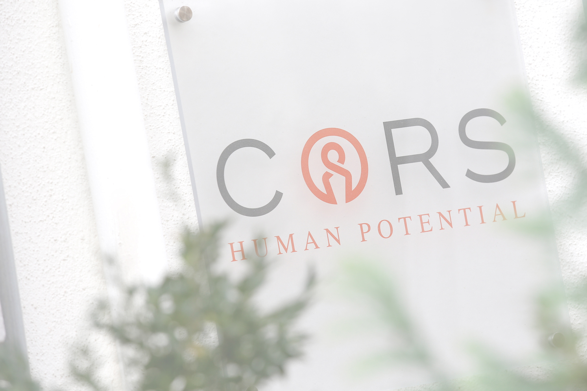 CORS Human Potential Slider
